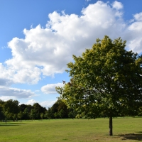 Nerd's Eye View : Hyde Park, London