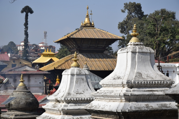 Photologue : Pashupatinath, Nepal