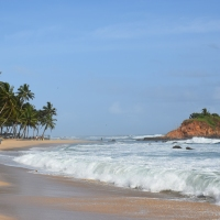 Nerd's Eye View : Mirissa, Sri Lanka